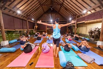 The Yoga Rescue - daily classes at our Studio